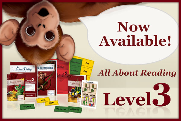 All About Reading Level 3