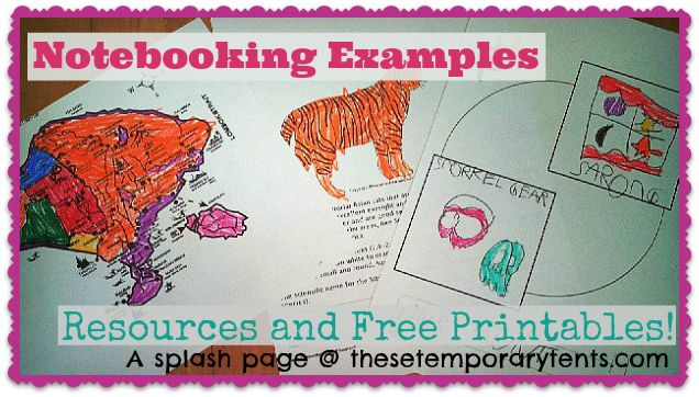 Notebooking Examples