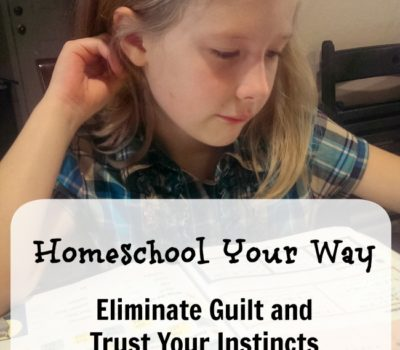 Homeschool Your Way: Eliminate Guilt and Trust Your Instincts