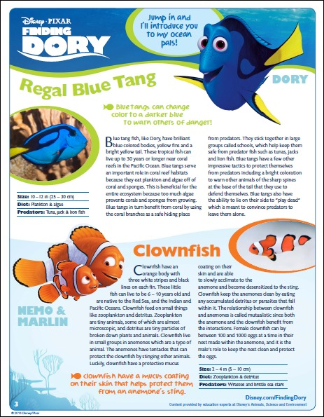 Finding Dory Educational Activity Book