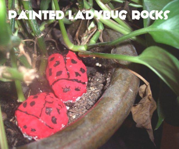 lady bug craft