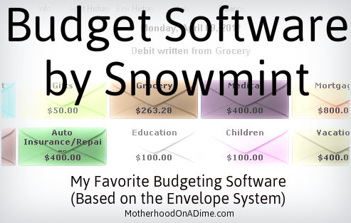 budget by snowmint review