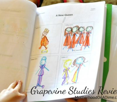 Stick Figuring Through the Bible:  Grapevine Studies Review