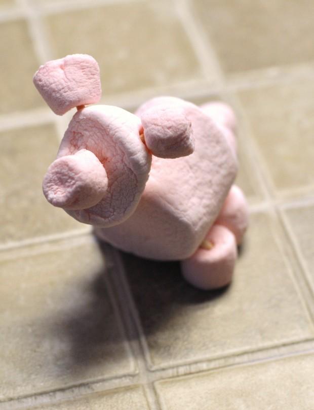 marshmallow pig