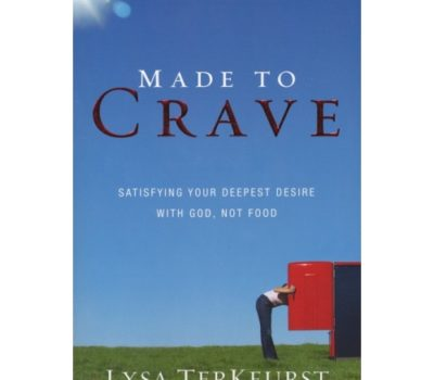 Made to Crave Book Study:  Introduction