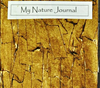 "Homemade Nature Journal with ""Tree Bark"" Cover"