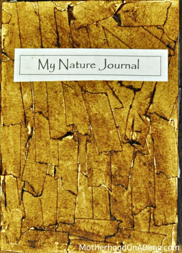 Creative Nature Journal Idea