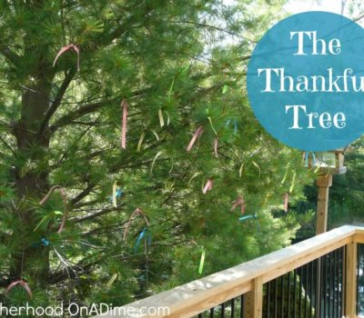 The Thankful Tree