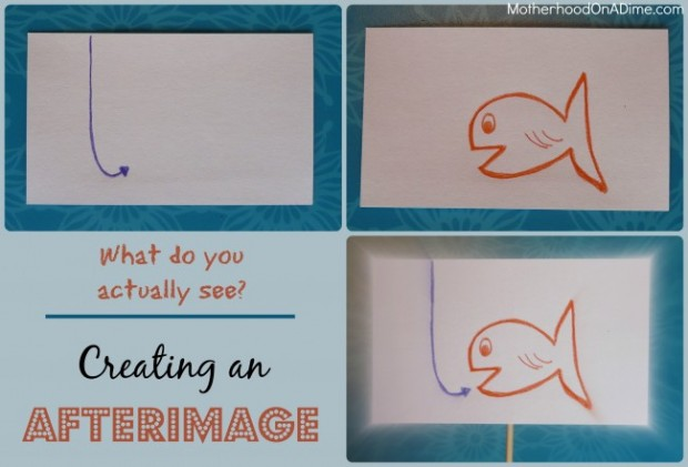 Cool Science Experiments for Kids:  Create an Afterimage