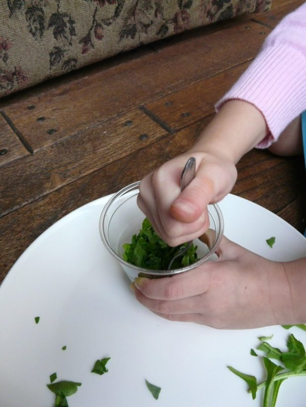 mash the spinach for our fall science experiment