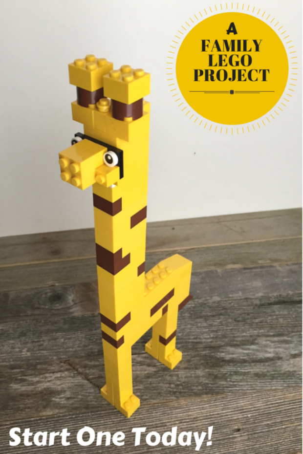 A Family Lego Project