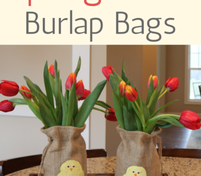 A Fun Craft for Kids:  Spring Chick Burlap Bags